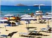 palermo,turismo,news,notizie,sicilia,estate,mare, alga tossica, capaci